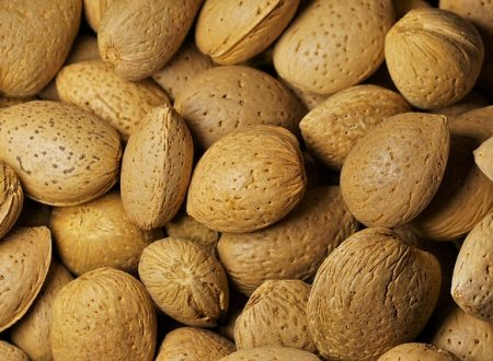 Mèndulas – Almonds